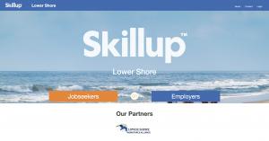 Skill Up Website Screen Shot